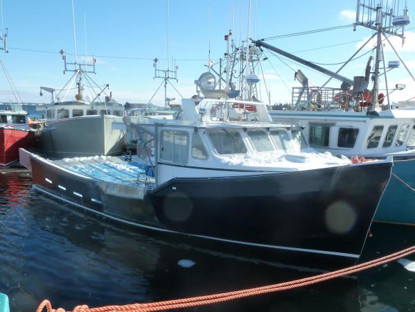 Black Dog Cat Fishing Boat