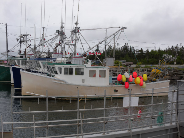 fishing boat Groundfish Lobster for sale 14395.jpg