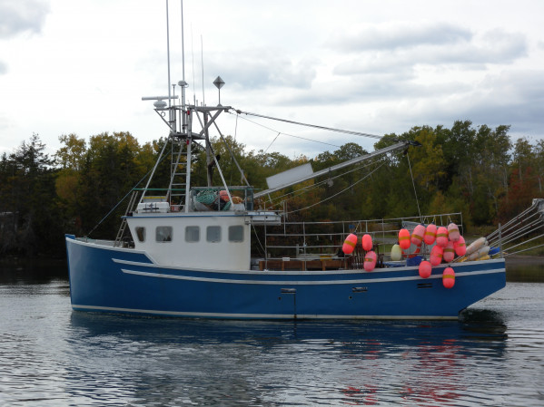 Novi marine brokers listing 7837 for Crab fishing boats for sale