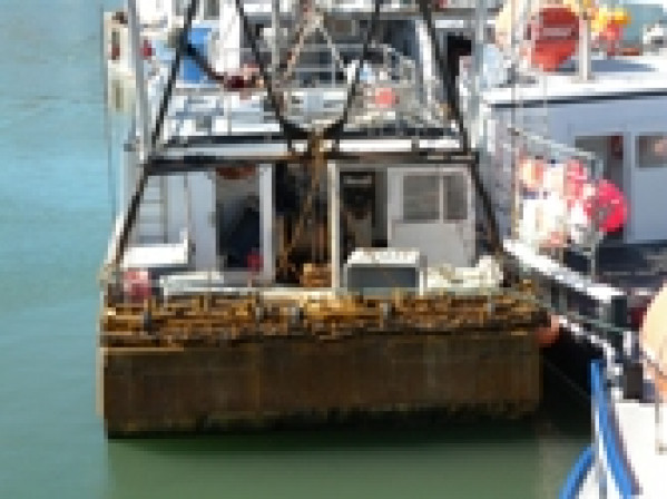 fishing boat Groundfish Lobster for sale 23251.jpg