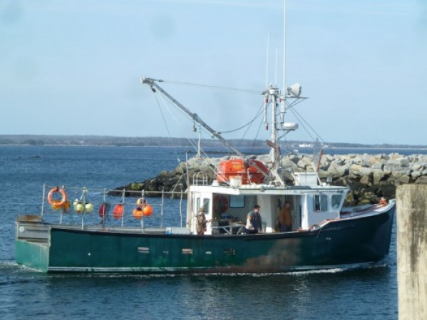 fishing boat for sale 24656.JPG