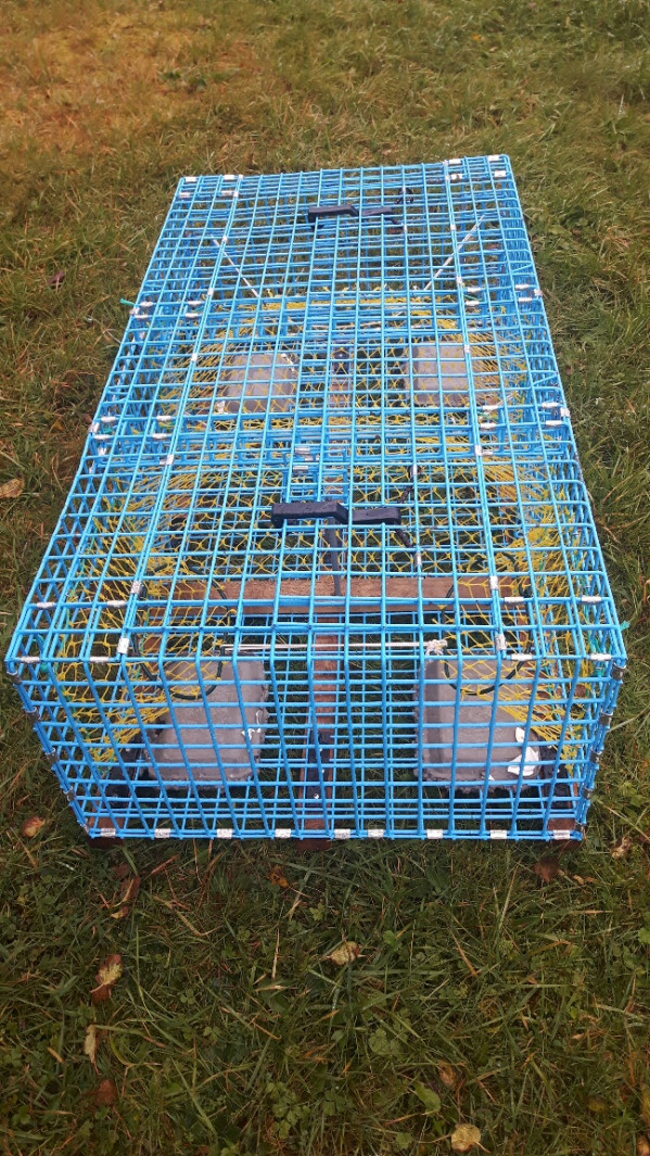 https://novimarinebrokers.com/storage/files/02/72/71/tn_fishing_gear_Traps_Fishing_Gear_for_sale_22834.jpg