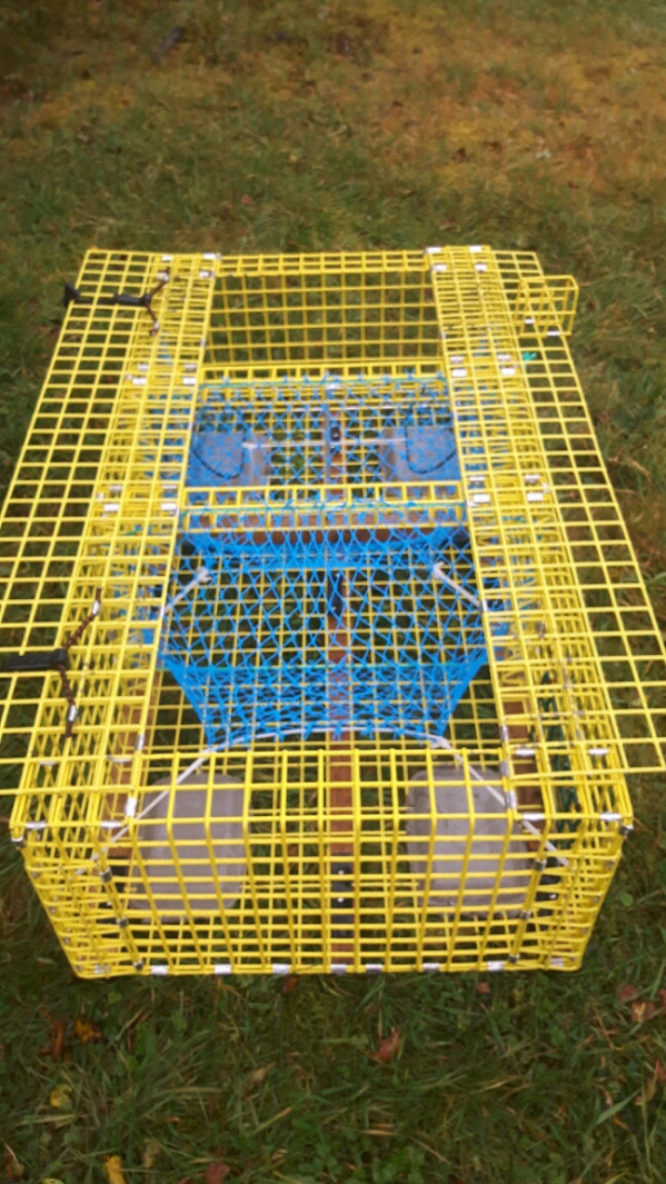 https://novimarinebrokers.com/storage/files/02/72/77/tn_fishing_gear_Traps_Fishing_Gear_for_sale_22840.jpg