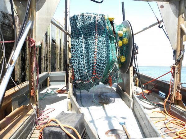 https://novimarinebrokers.com/storage/files/03/08/39/tn_fishing_boat_Groundfish_Scallop_Sea_Cucumber_Bait_for_sale_26068.JPG