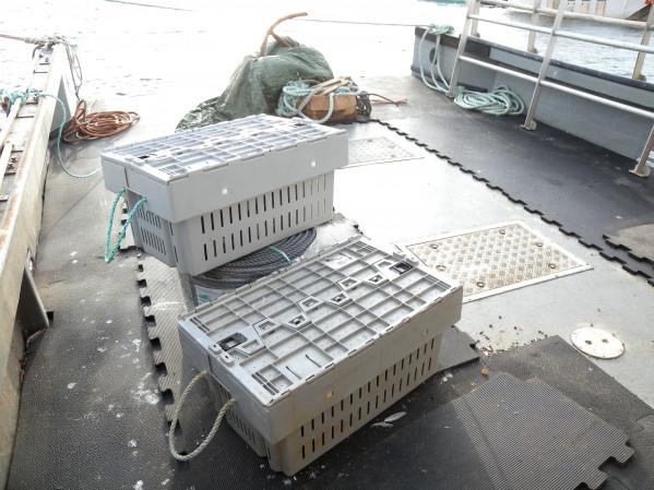 https://novimarinebrokers.com/storage/files/03/11/84/tn_fishing_boat_Lobster_for_sale_26378.JPG