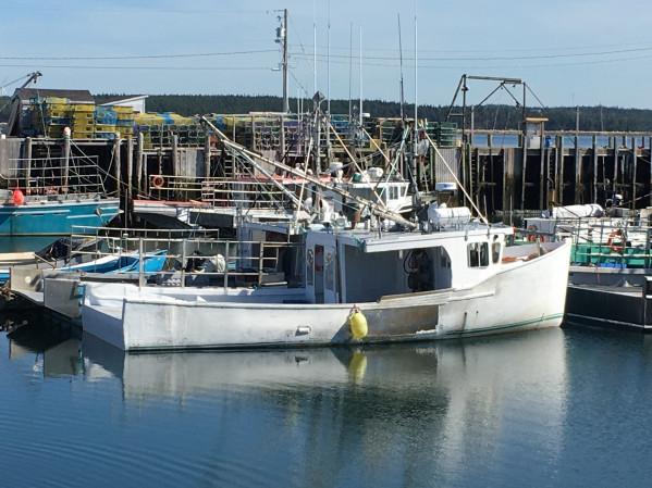 https://novimarinebrokers.com/storage/files/03/51/39/tn_fishing_boat_Lobster_Groundfish_Herring_Mackerel_Crab_Swordfish_Herring__Mackerel_Pelagic_Unspecified_bait_Sea_Urchin_Seal_Shark_Tuna_Whelks_Sea_Cucumber_for_sale_30049.JPG